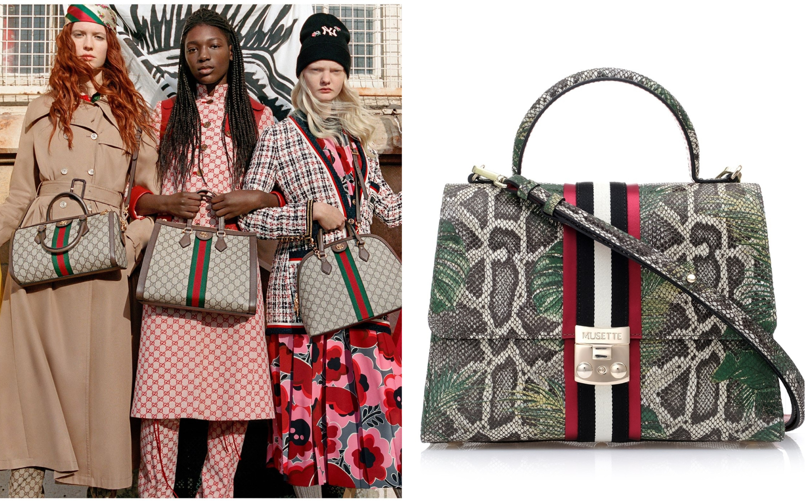 Ups! Musette loves Gucci